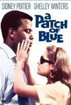 Subtitrare A Patch of Blue (1965)