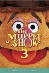 Subtitrare The Muppet Show (1976)