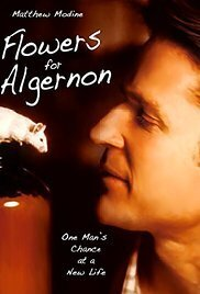 Subtitrare Flowers for Algernon (2000) (TV)