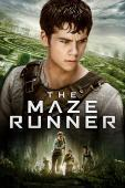 Subtitrare The Maze Runner (2014)