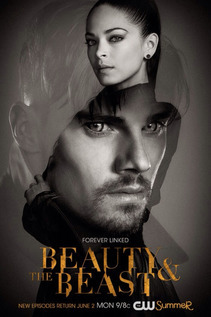 Subtitrare Beauty and the Beast - Sezonul 2 (2013)