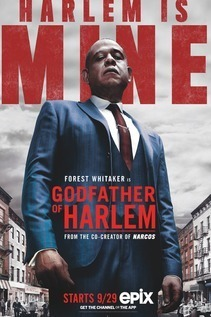 Subtitrare Godfather of Harlem - Sezonul 1 (2019)