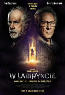 Subtitrare Into the Labyrinth (L'uomo del labirinto) (2019)